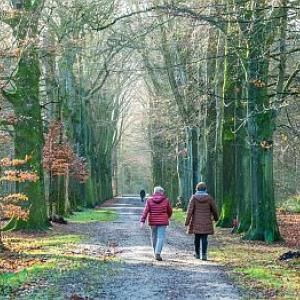 Walk & Talk wandeling